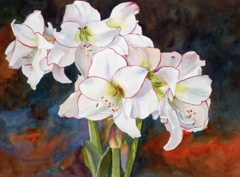 """White Amaryllis"" by Kay Smith"