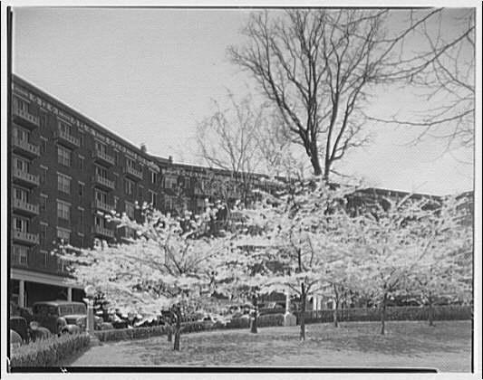wardman hotel