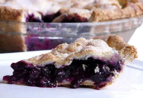 blueberry pie august 12th, 2009 2 (2)500