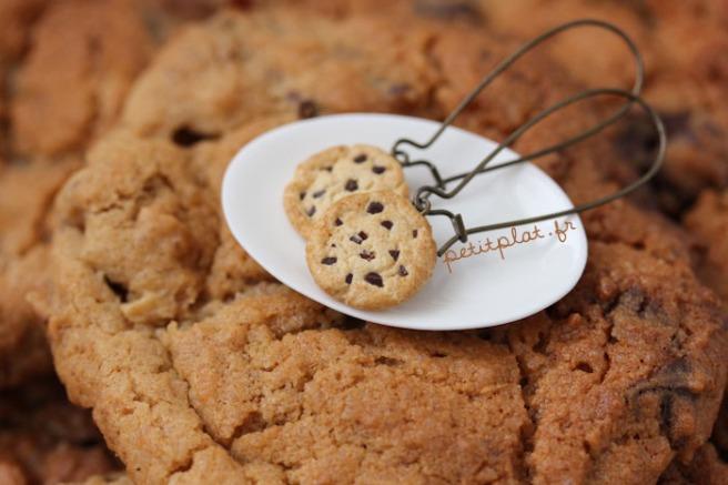 bo_cookiessurcookie (2)