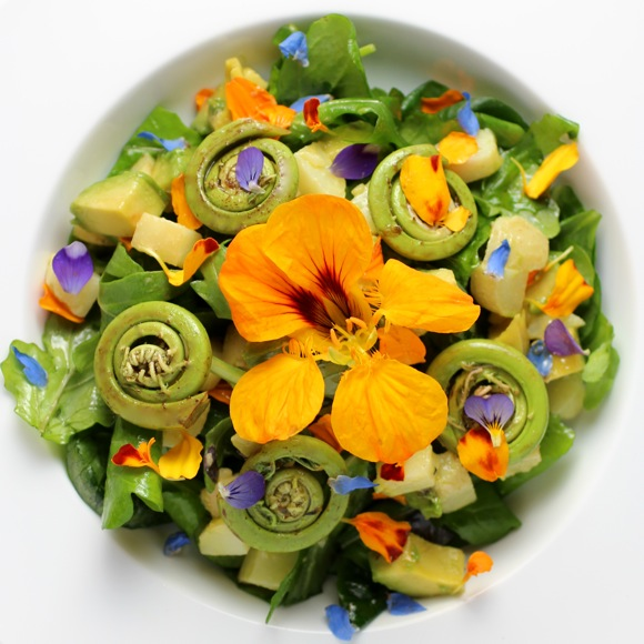 fiddlehead fern and flower salad