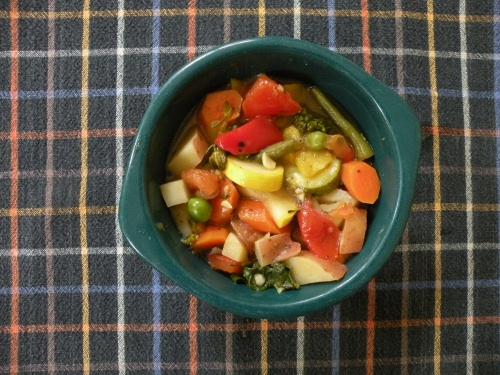 bowl of rainbow stew (3)500