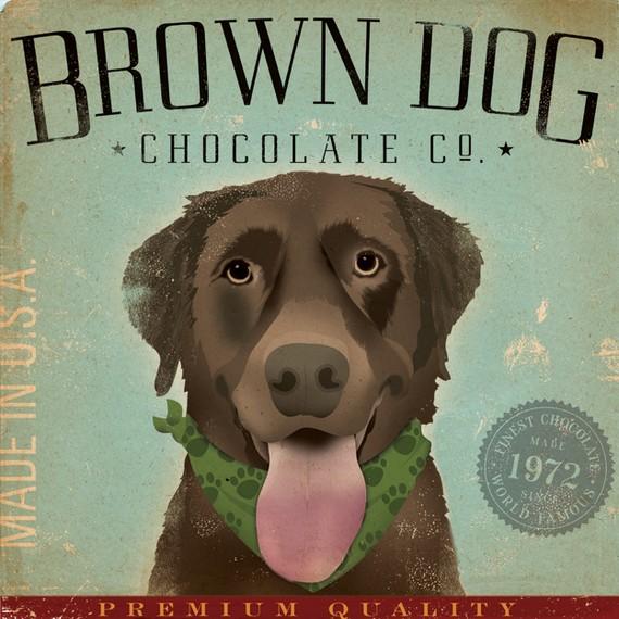 chocolate dog