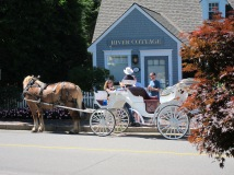 Carriage Ride, Kennebunkport